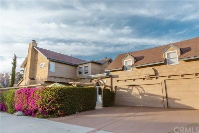 San Juan Capistrano Single Family Home For Sale: 26562 Calle Lorenzo