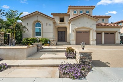 Yorba Linda Single Family Home For Sale: 20101 Trentino Lane