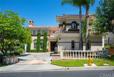 San Juan Capistrano Single Family Home For Sale: 30952 Via Bravo