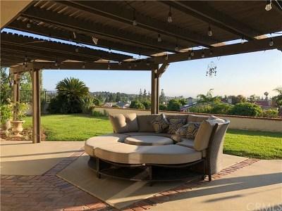 Yorba Linda Single Family Home For Sale: 5197 Vista Del Amigo