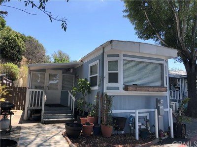 San Juan Capistrano Mobile Home For Sale: 32802 Valle Rd