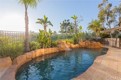 Rancho Santa Margarita Single Family Home For Sale: 15 Promontory