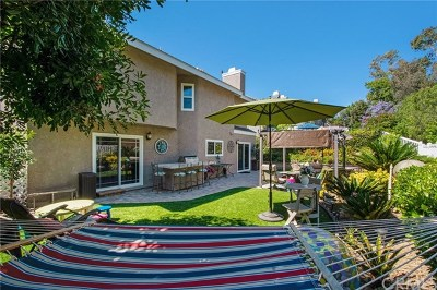 Laguna Hills Single Family Home For Sale: 26162 Buena Vista Court