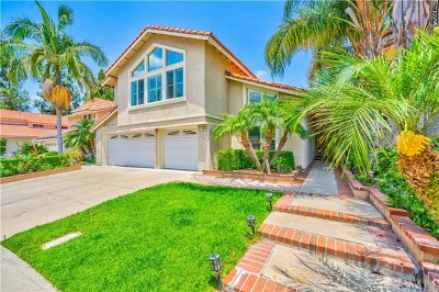 Irvine Single Family Home For Sale: 12 Encina