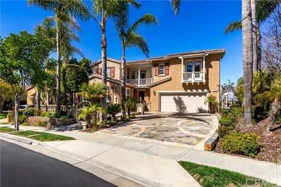 San Clemente Single Family Home For Sale: 4133 Costero Risco