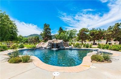 Murrieta Single Family Home For Sale: 42380 Meadowlark