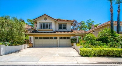 Rancho Santa Margarita Single Family Home For Sale: 28 Amantes