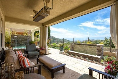 Talega Single Family Home For Sale: 25 Via Soria