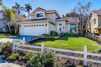 Laguna Niguel Single Family Home For Sale: 32241 Ridgeway Avenue