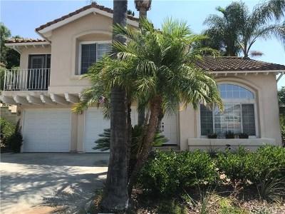 Single Family Home For Sale: 26092 Ravenna Road