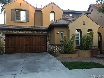Mission Viejo Single Family Home For Sale: 91 Windswept Way