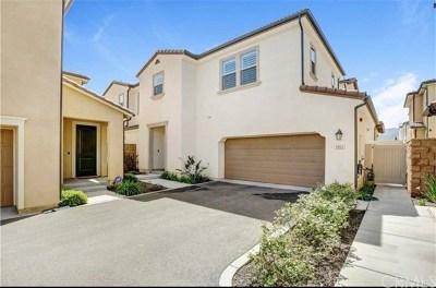 Corona Single Family Home For Sale: 2863 Menorca Circle