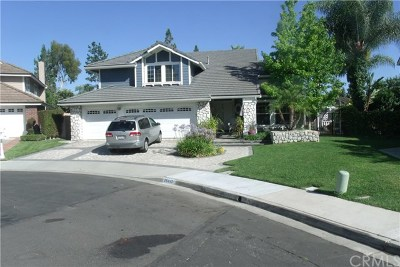 Orange County Rental For Rent: 25442 Burntwood