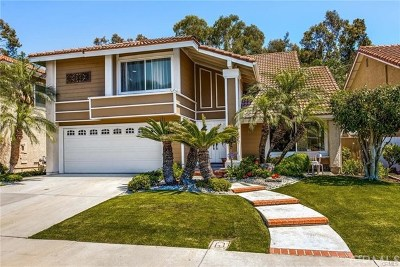 Irvine Single Family Home For Sale: 28 Christamon
