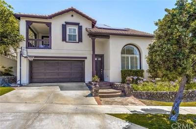 San Clemente Single Family Home For Sale: 7 Camino Silla