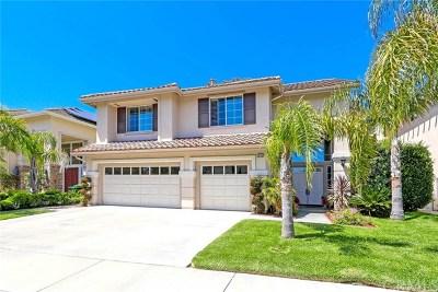 San Clemente Single Family Home For Sale: 918 Rio Lindo