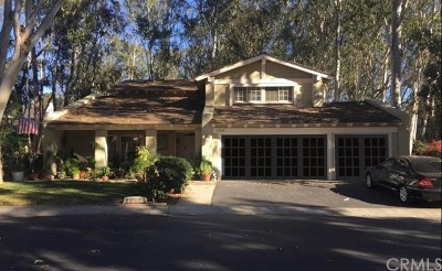 Lake Forest Single Family Home For Sale: 22092 Shadyvale Lane