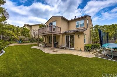 San Clemente Rental For Rent: 1701 Colina Terrestre