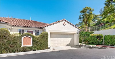 San Clemente Single Family Home For Sale: 82 Avenida Cristal