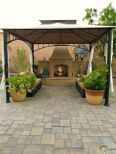 Irvine Single Family Home For Sale: 14 Arizona