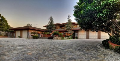 Coto de Caza Single Family Home For Sale: 7 Olympic Way