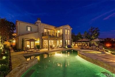 San Clemente Single Family Home For Sale: 20 Via Carina