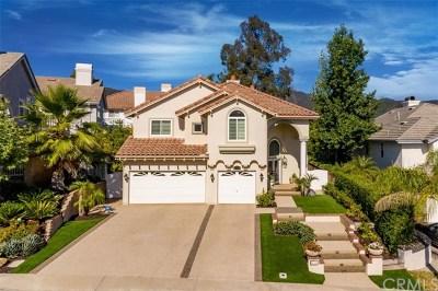 Rancho Santa Margarita Single Family Home For Sale: 21792 Via Del Lago