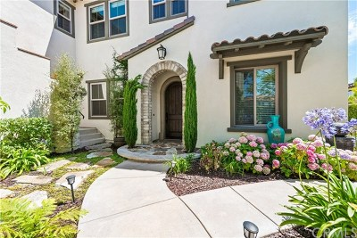 San Clemente Single Family Home For Sale: 25 Via Lampara