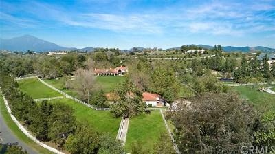 Coto de Caza Single Family Home For Sale: 31731 Madre Selva Lane
