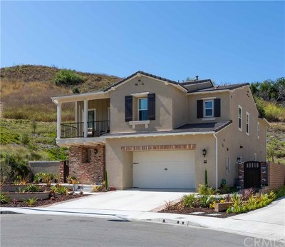 Mission Viejo Single Family Home For Sale: 32 Cielo Prado
