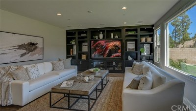 Irvine Single Family Home For Sale: 127 Kennard