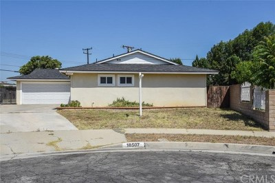 Rowland Heights Single Family Home For Sale: 18507 Bellorita Street