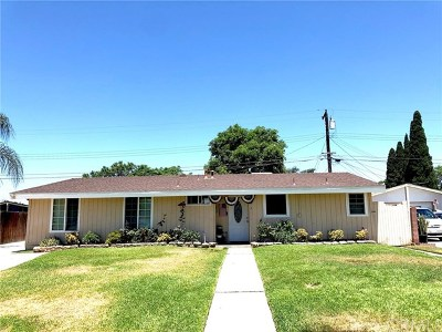 Fullerton Single Family Home For Sale: 519 W Gage Avenue
