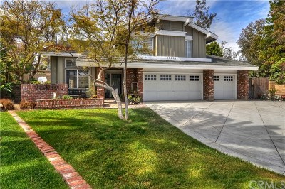 San Juan Capistrano Single Family Home For Sale: 27661 Paseo Barona