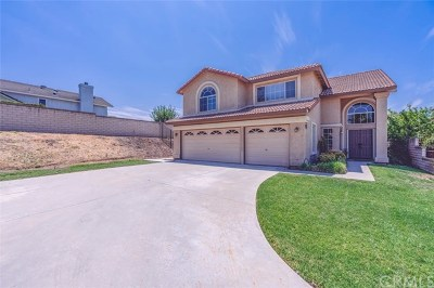 Placentia Single Family Home For Sale: 1484 Garcia Place