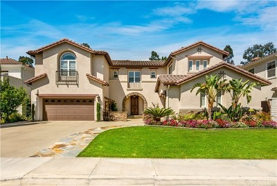 Tustin Single Family Home For Sale: 2329 Cranston Lane