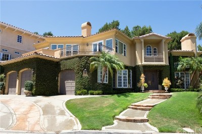 San Juan Capistrano Single Family Home For Sale: 30461 Marbella Vista