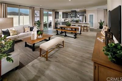 Lake Elsinore Single Family Home For Sale: 29123 Brittbush Court
