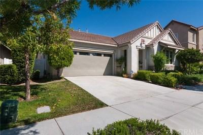 Temecula Single Family Home For Sale: 40259 Pasadena Drive