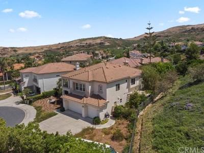 San Juan Capistrano Single Family Home For Sale: 31342 Via Del Verde
