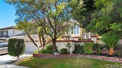 Laguna Niguel Single Family Home For Sale: 28602 Silverton Drive