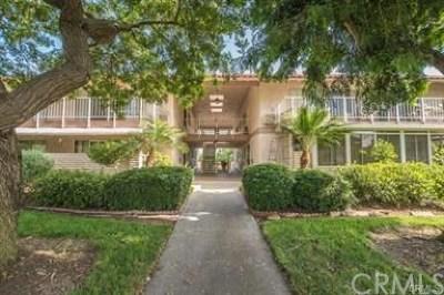 Laguna Woods Condo/Townhouse For Sale: 2118 Via Puerta #D