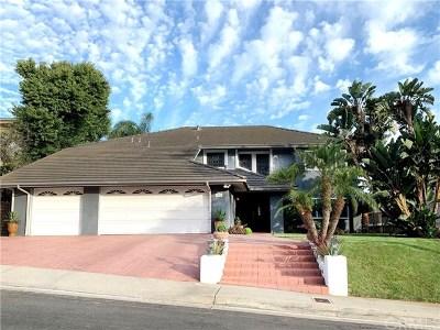 San Clemente Single Family Home For Sale: 3815 Via Manzana