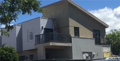 Glendale Multi Family Home For Sale: 117 W Chestnut Street