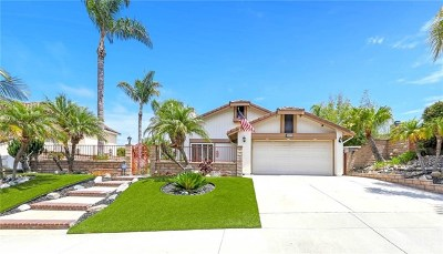 Forster Ranch Single Family Home For Sale: 2859 Campo Raso