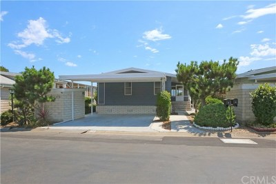 San Clemente Manufactured Home For Sale: 173 Mira Del Oeste