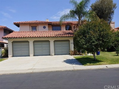 San Juan Capistrano Single Family Home For Sale: 31262 Via Fajita