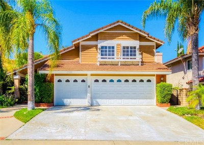 Chino Hills Single Family Home For Sale: 17868 Paseo Del Sol