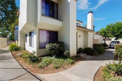 Brea Condo/Townhouse For Sale: 316 Mountain Court