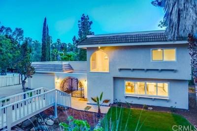 Vista Single Family Home For Sale: 3026 Oriente Drive